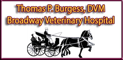 Broadway Veterinary Hospital