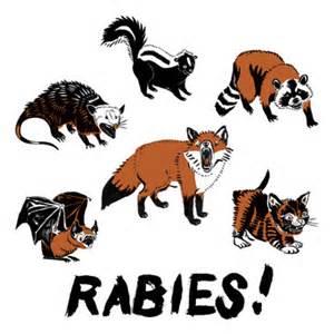 2018 Rabies Clinic